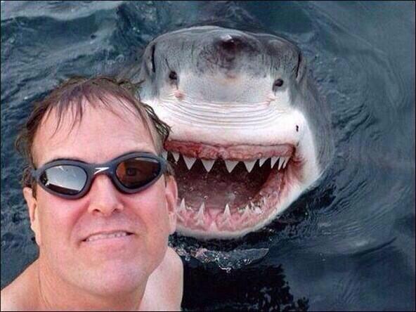 Selfie-avec-un-requin